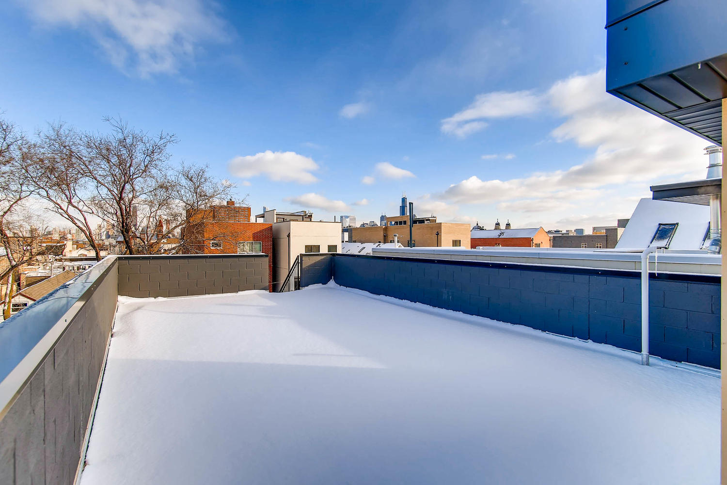 Building roof deck at 877 N Marshfield Ave Unit 3, Chicago, IL