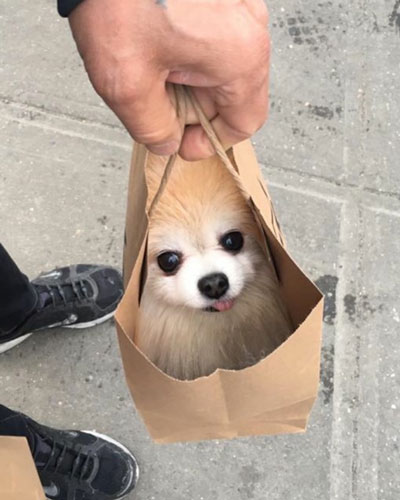 a special delivery