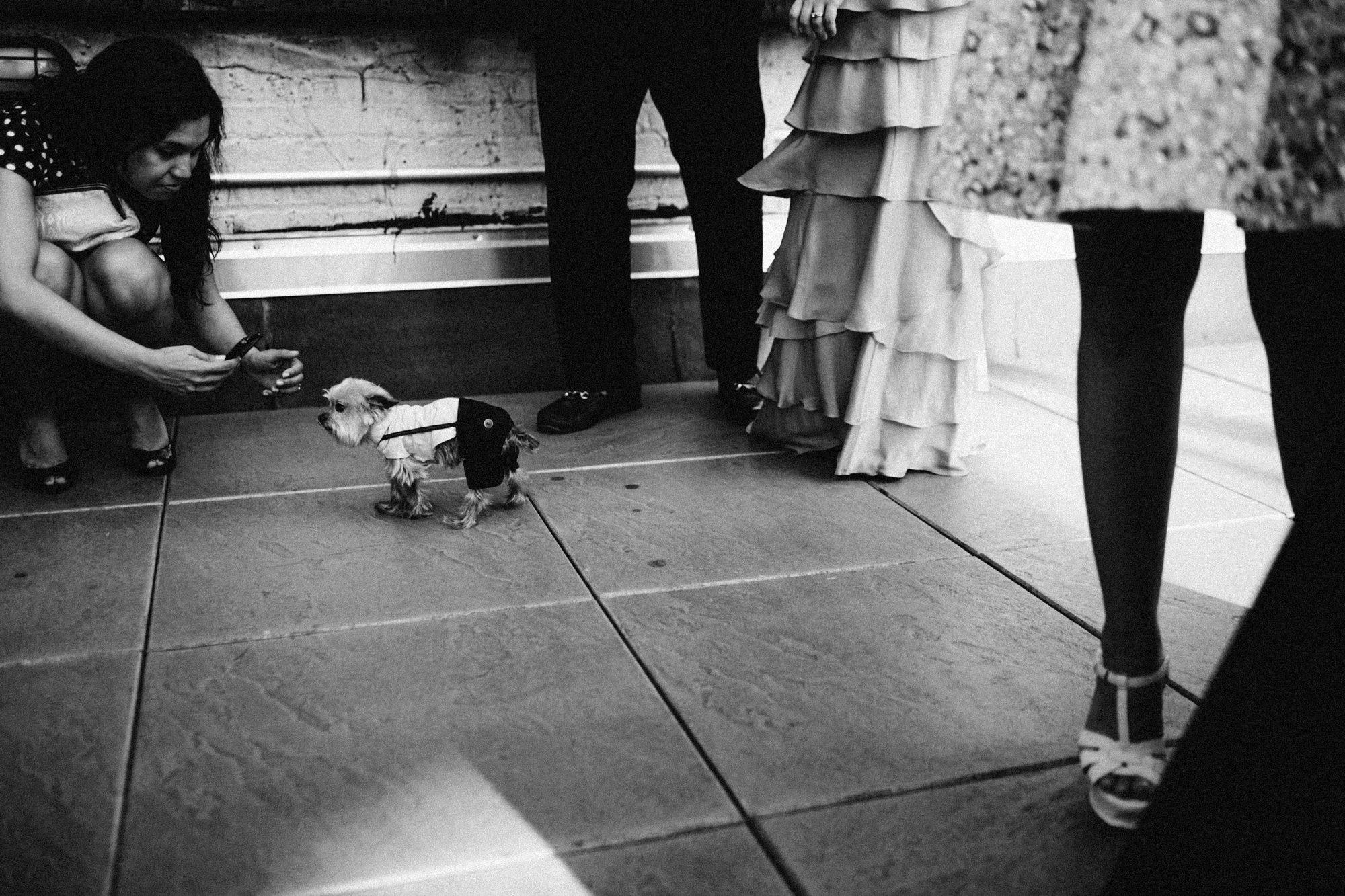 SAMMBLAKE_NYCPHOTOGRAPHER_WEN_382.jpg