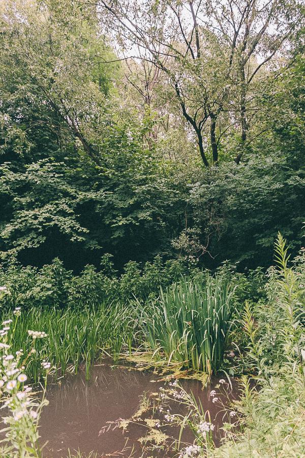 Gburyk swimming hole?