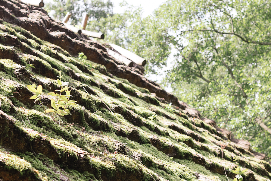 """The original """"green"""" roofing system. Really, really green."""