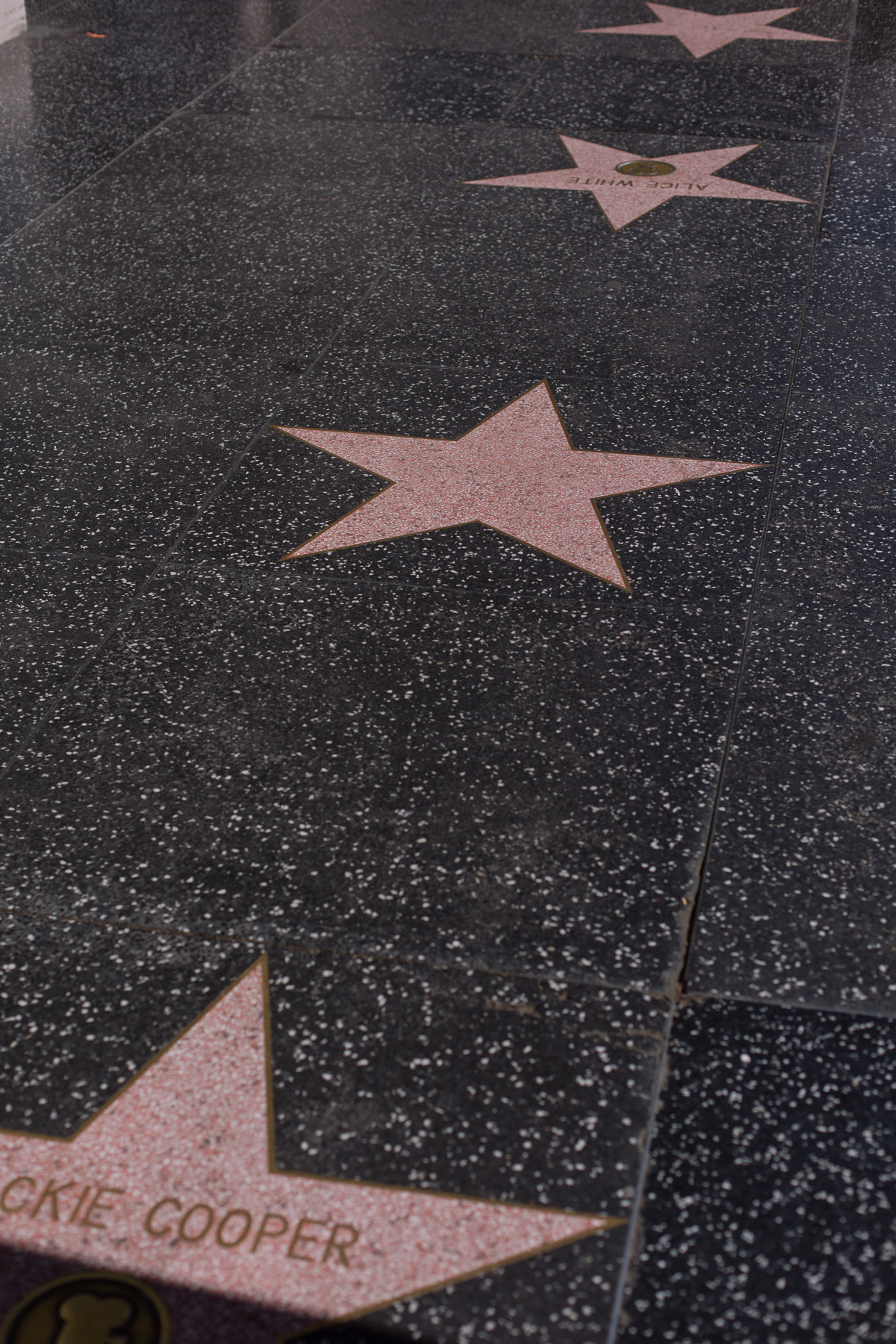 Hollywood Stars Los Angeles