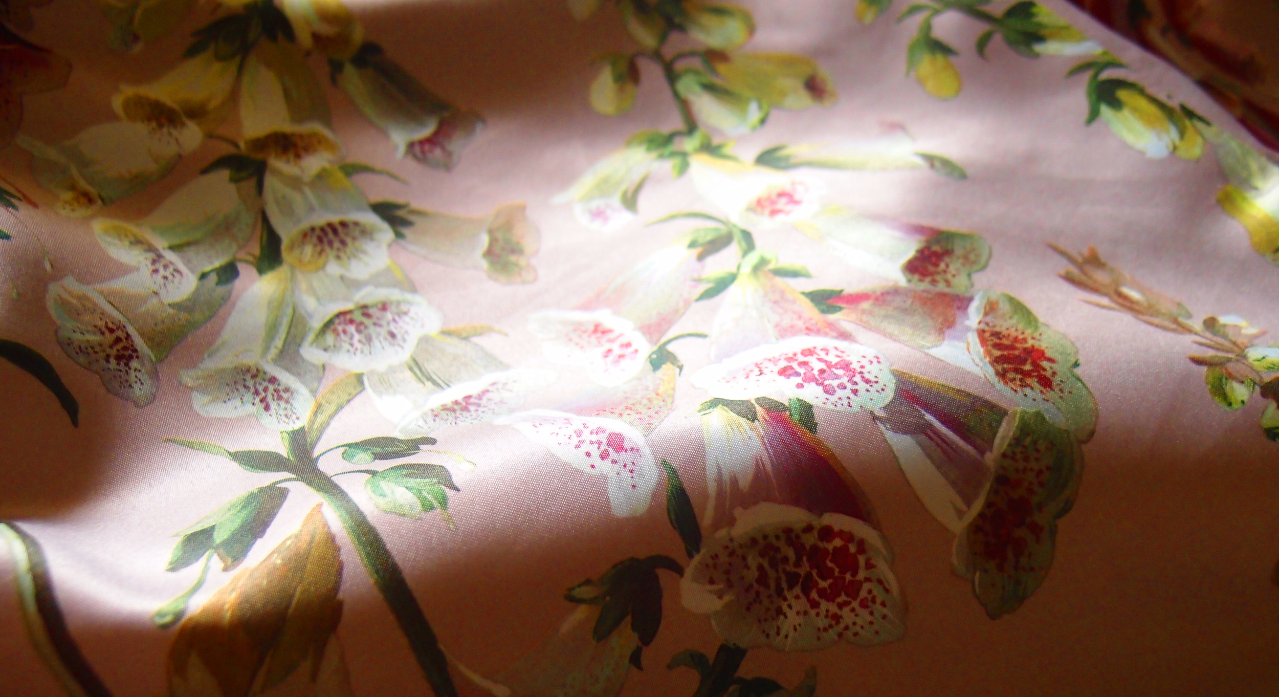 The lining of my Ted Baker coat