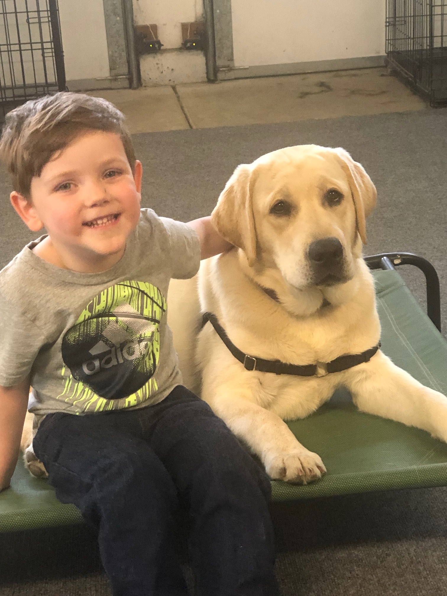 Max and Casper - Max and Casper are best buds! The bond between these two was instantaneous.Please help Max get his service dog through your donation!