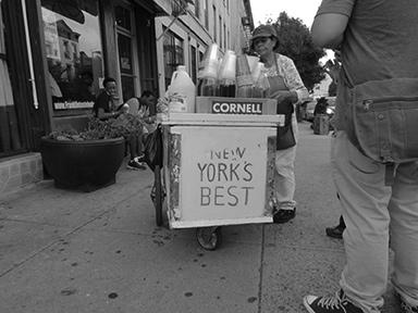 new_yorks_best.jpg