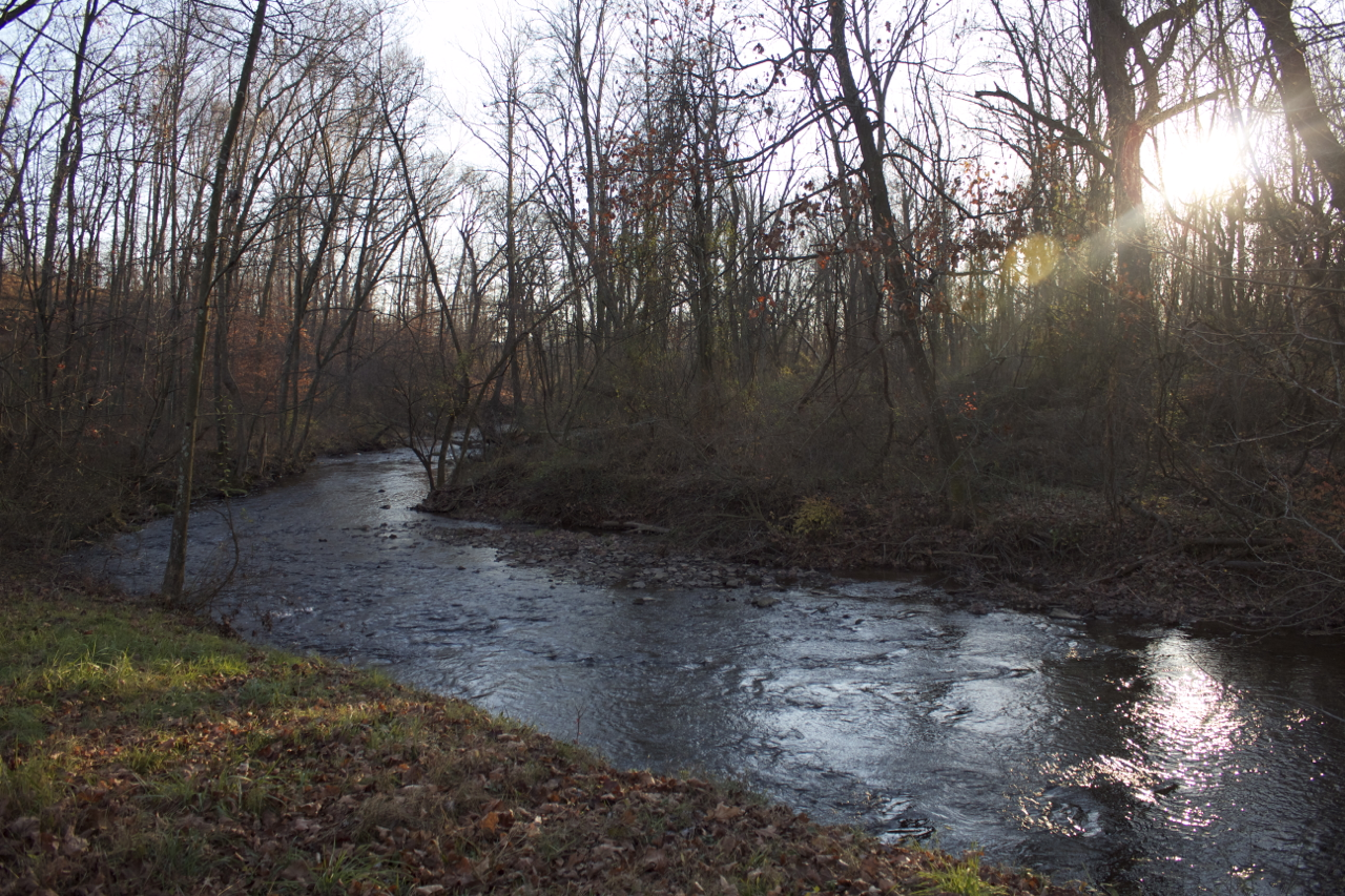 Late afternoon at the creek