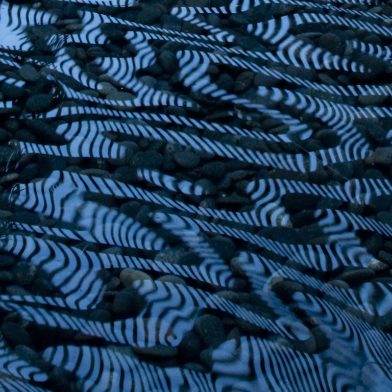 Blue Zebra IV
