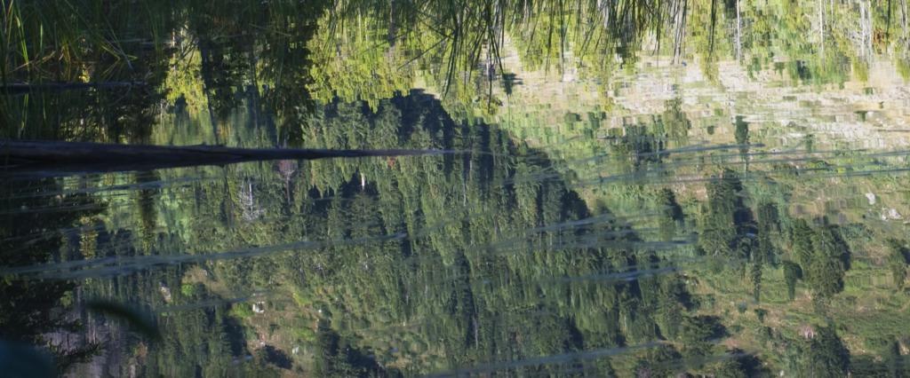 Japanese Mountain-Reflection II