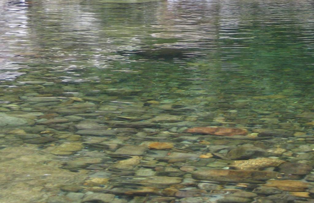 River Stones- Reflection IV