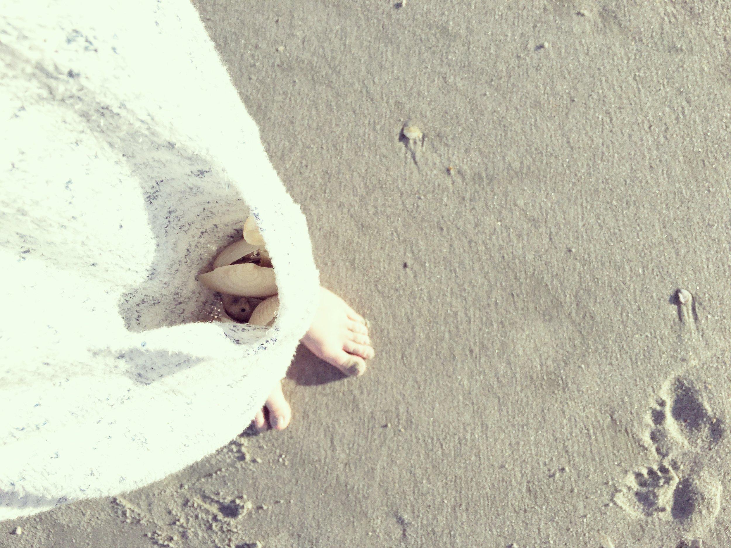 pocket full of shells