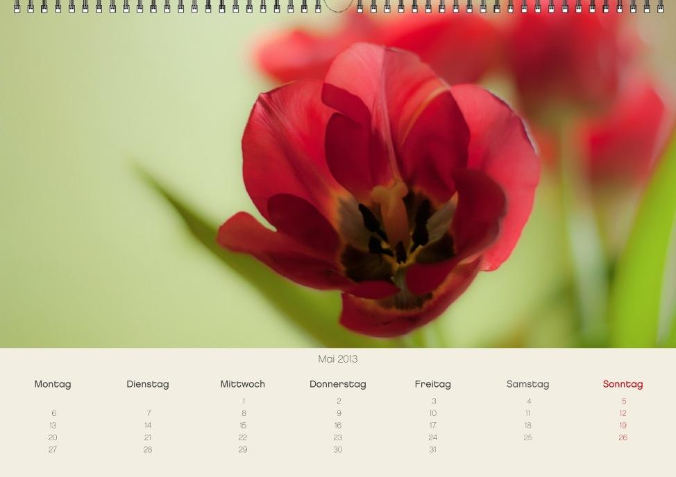 screen 2012-11-25 um 15.39.42.JPG