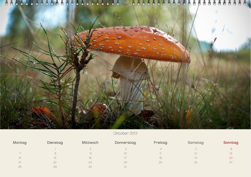 screen 2012-11-25 um 15.40.40.JPG