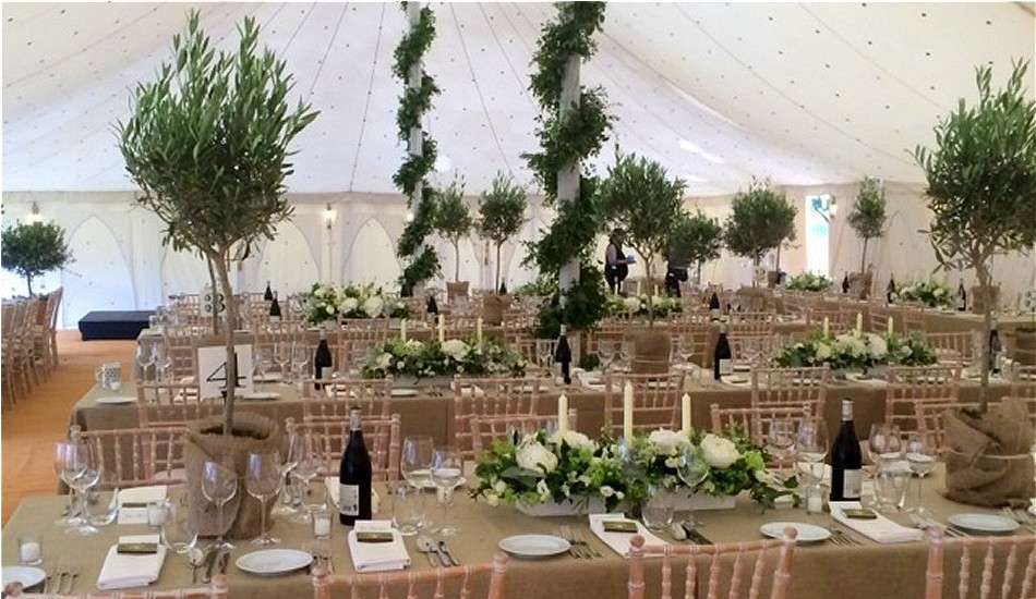 Foliage garlands spiralled the marquee poles while Olive trees and long wooden boxes stuffed with Hydrangeas, Peonies, Roses and Spirea dressed the tables.