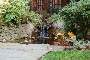 Not all water features are created equal.