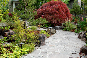Lake Oswego, Oregon native landscape design.