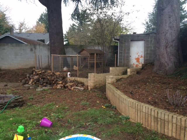 Retaining walls, shed, trees, and chickens- the nonnegotiable.