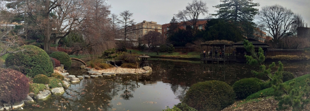 hill-pond-garden-pano