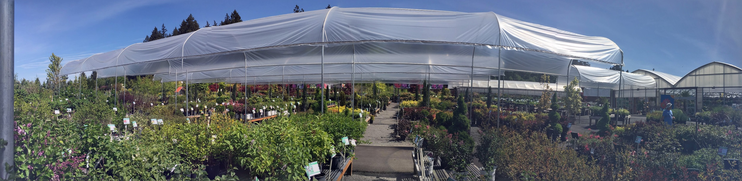 5 Portland Nurseries You Have To Visit