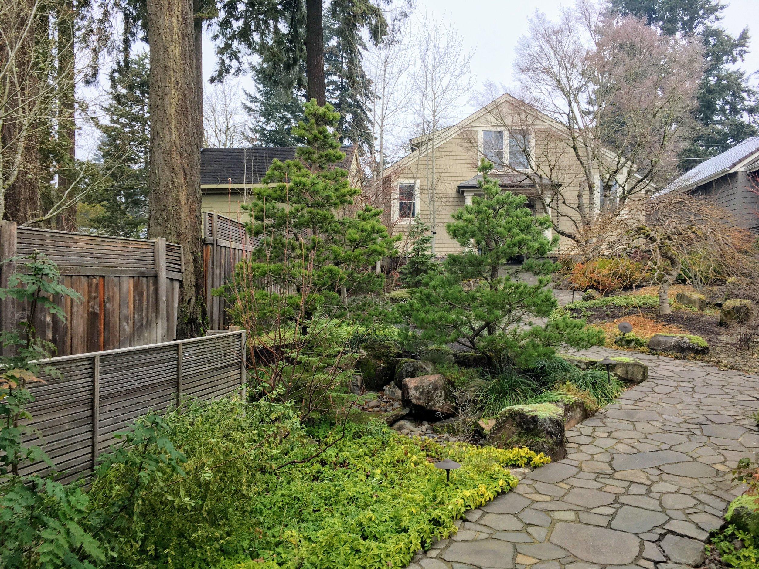 winter-garden.jpg