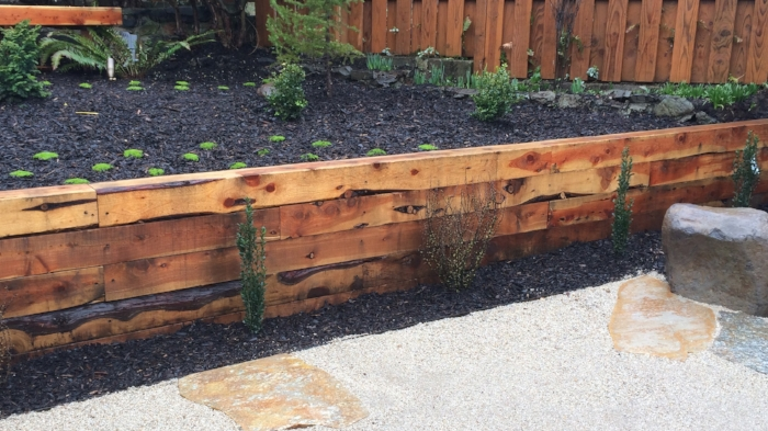 Juniper retaining wall.