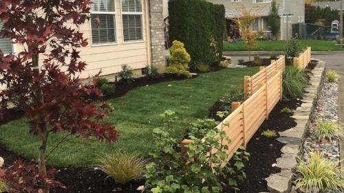 renovate your portland grass