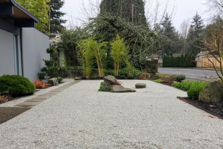 Dry Garden Landscape