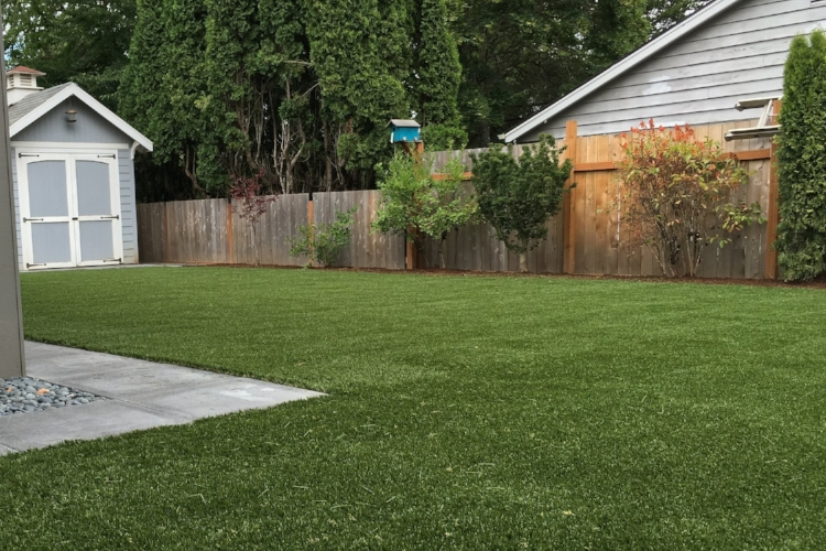 Artificial turf in a Portland backyard.