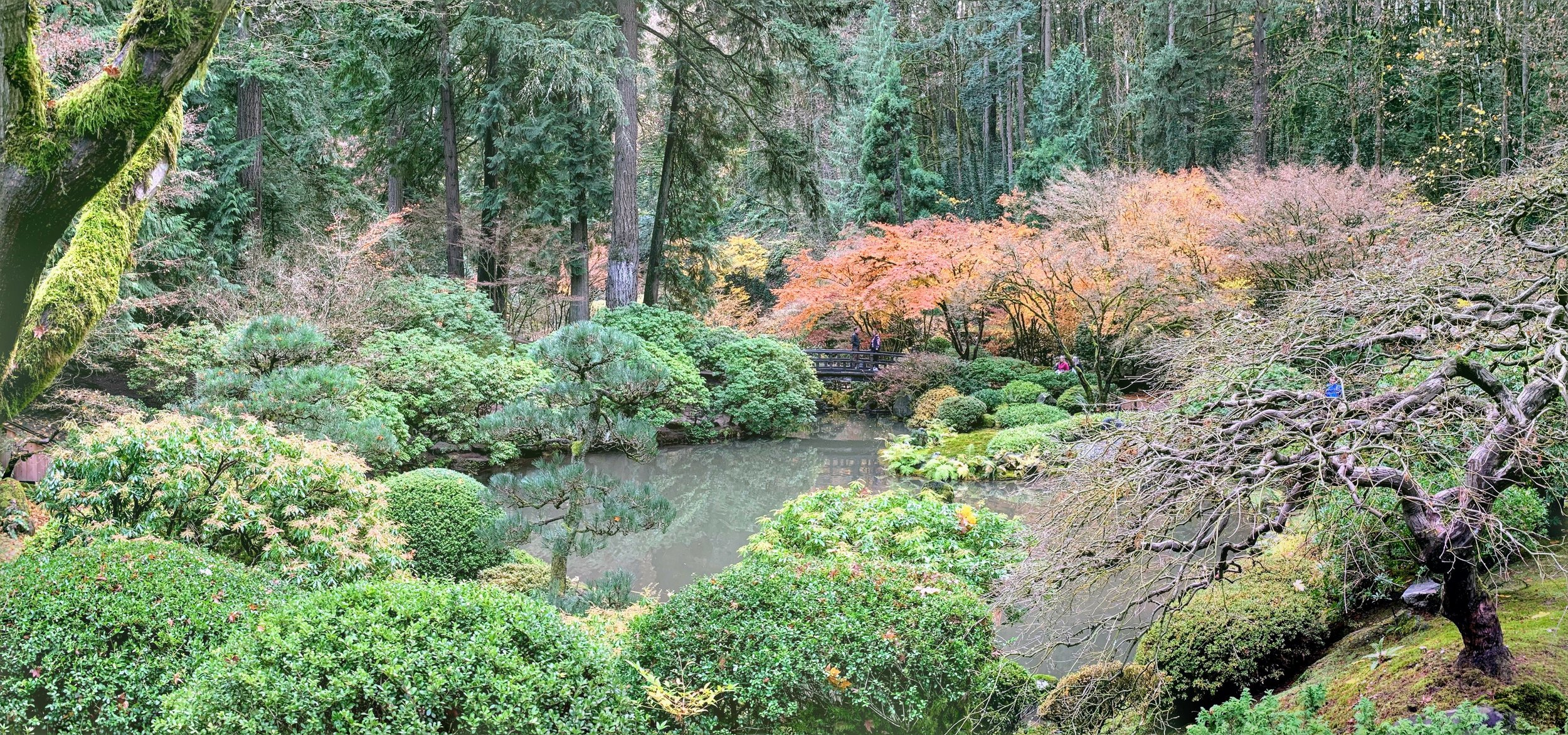 Another panoramic view of the garden.