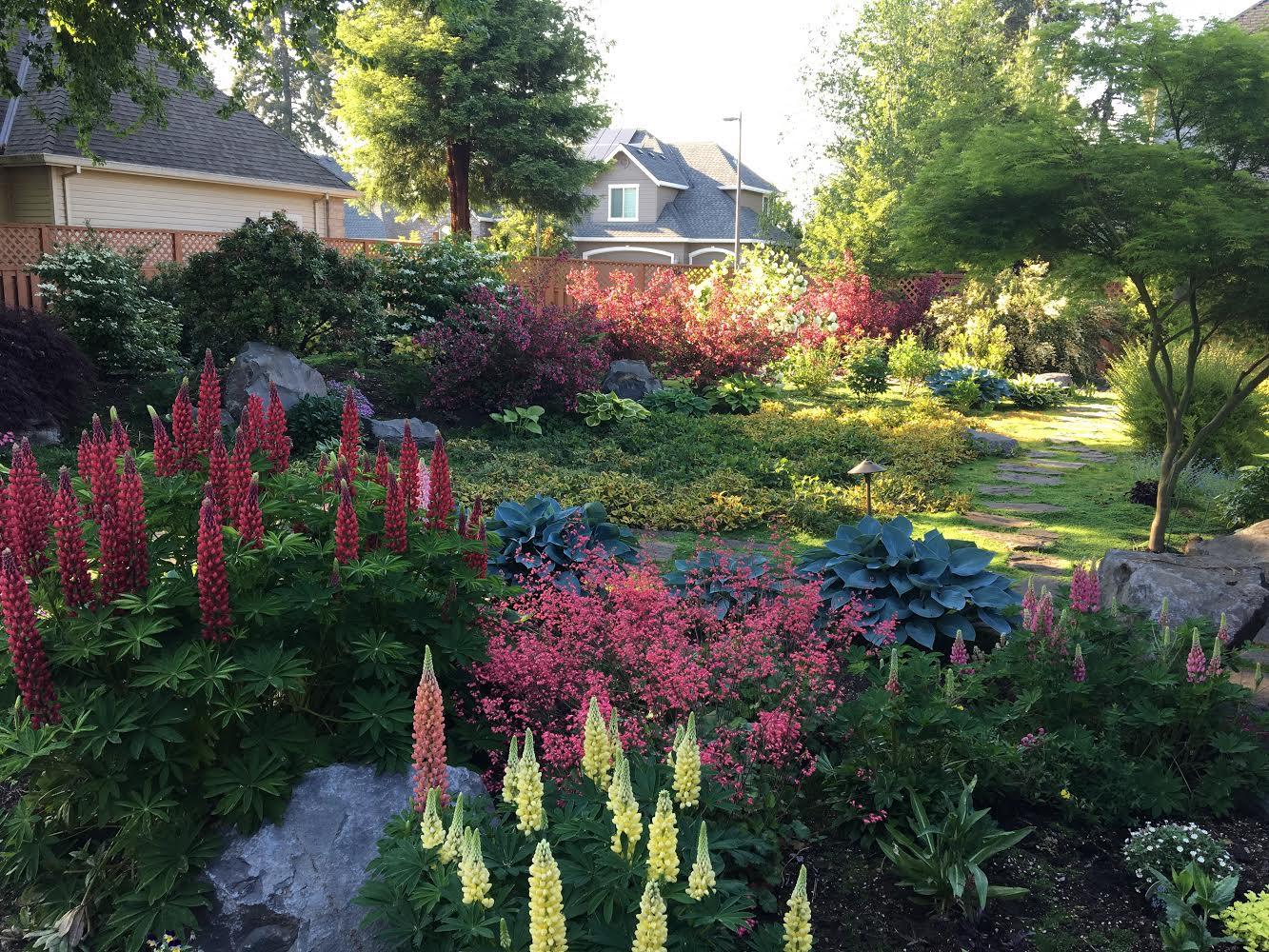 landscape plants out of stock