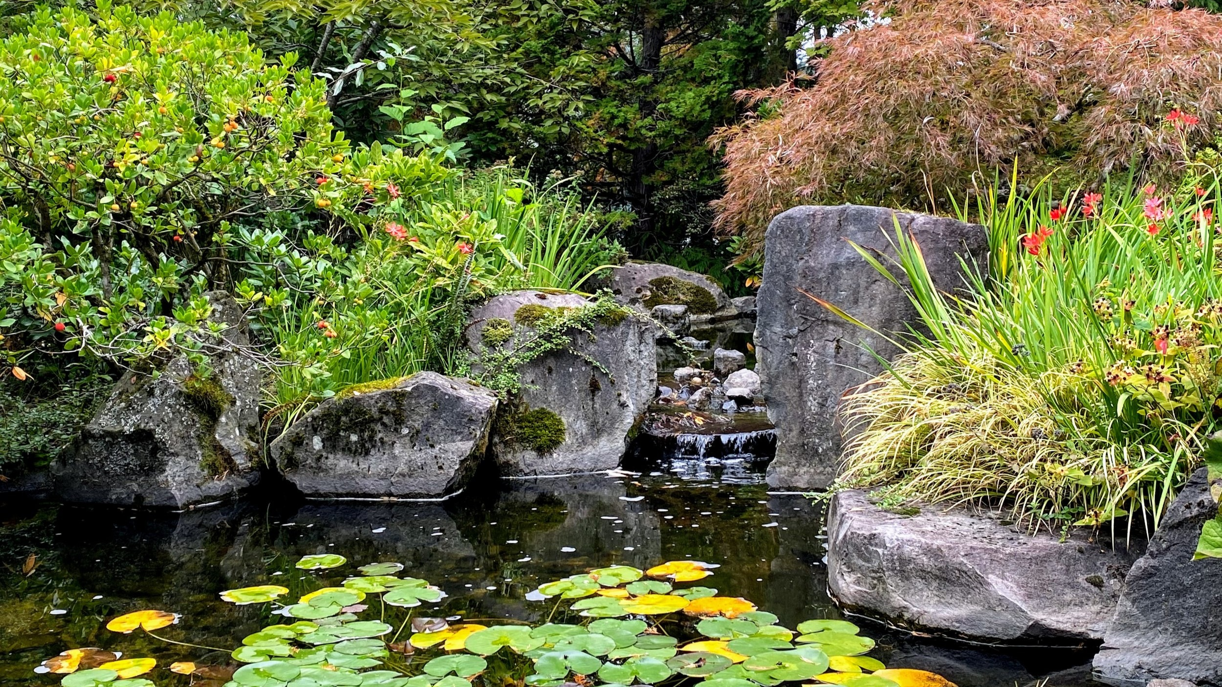 water feature by ross nw watergarden koi pond