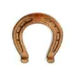 horseshoe large.PNG
