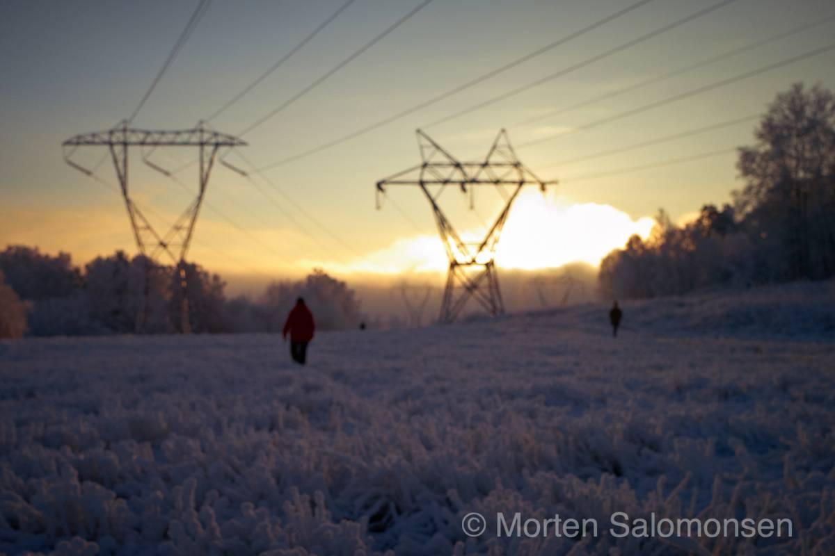 L1000418-MortenSalomonsen_v3.jpg