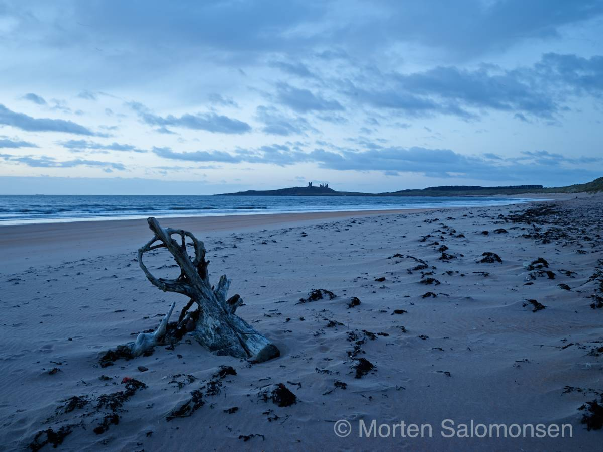 Embleton Bay north of Dunstanburgh Castle, just before sunrise.