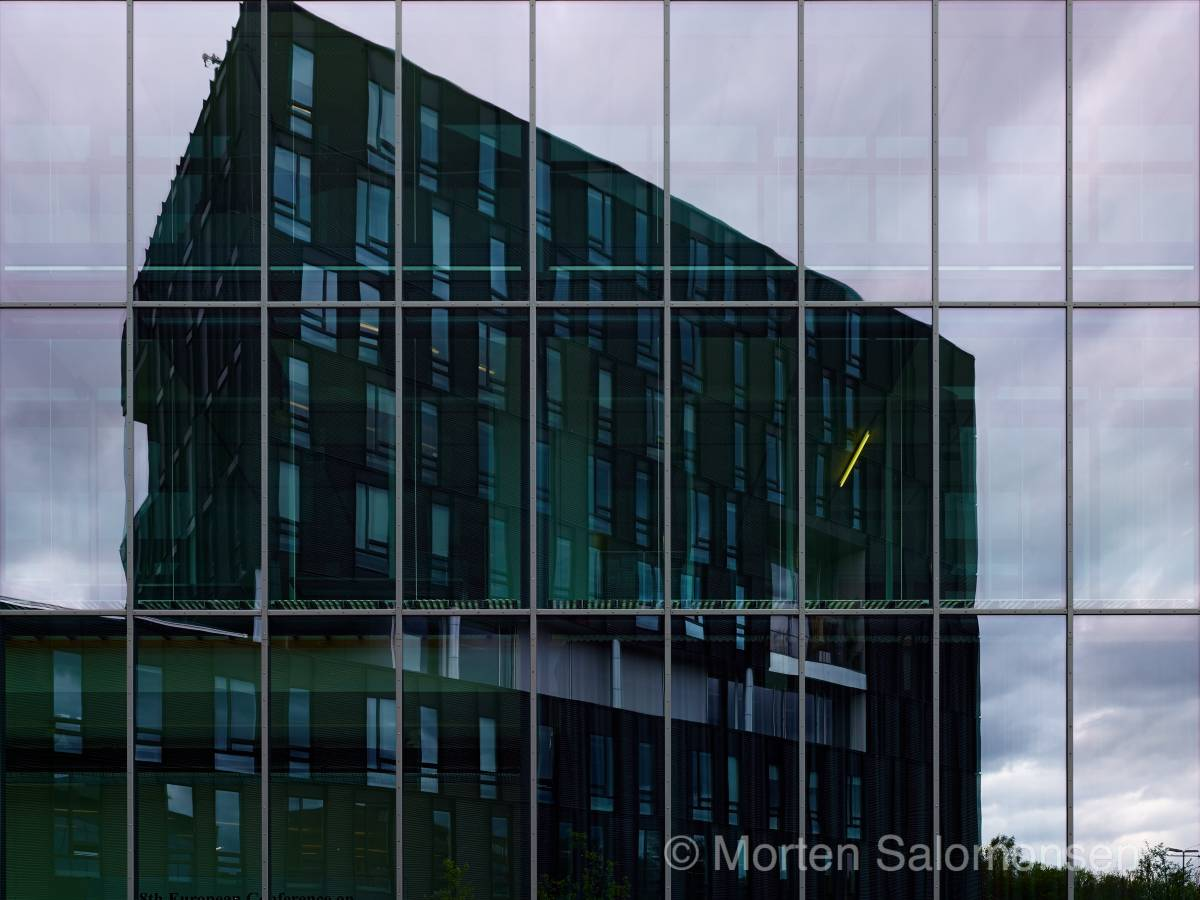 CF000719-MortenSalomonsen.jpg