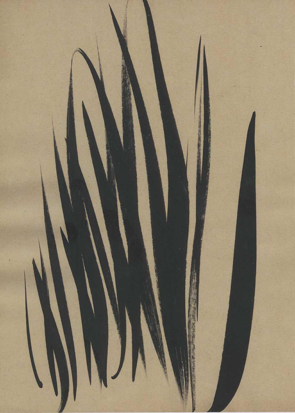 1753-199.jpg