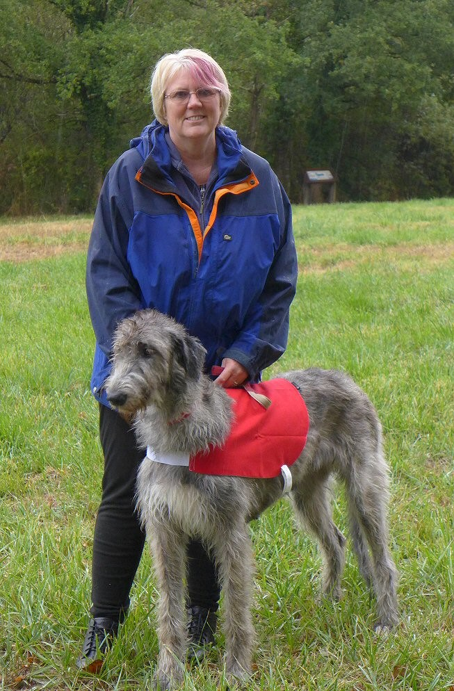 Suz and Tilly at lure coursing.jpg