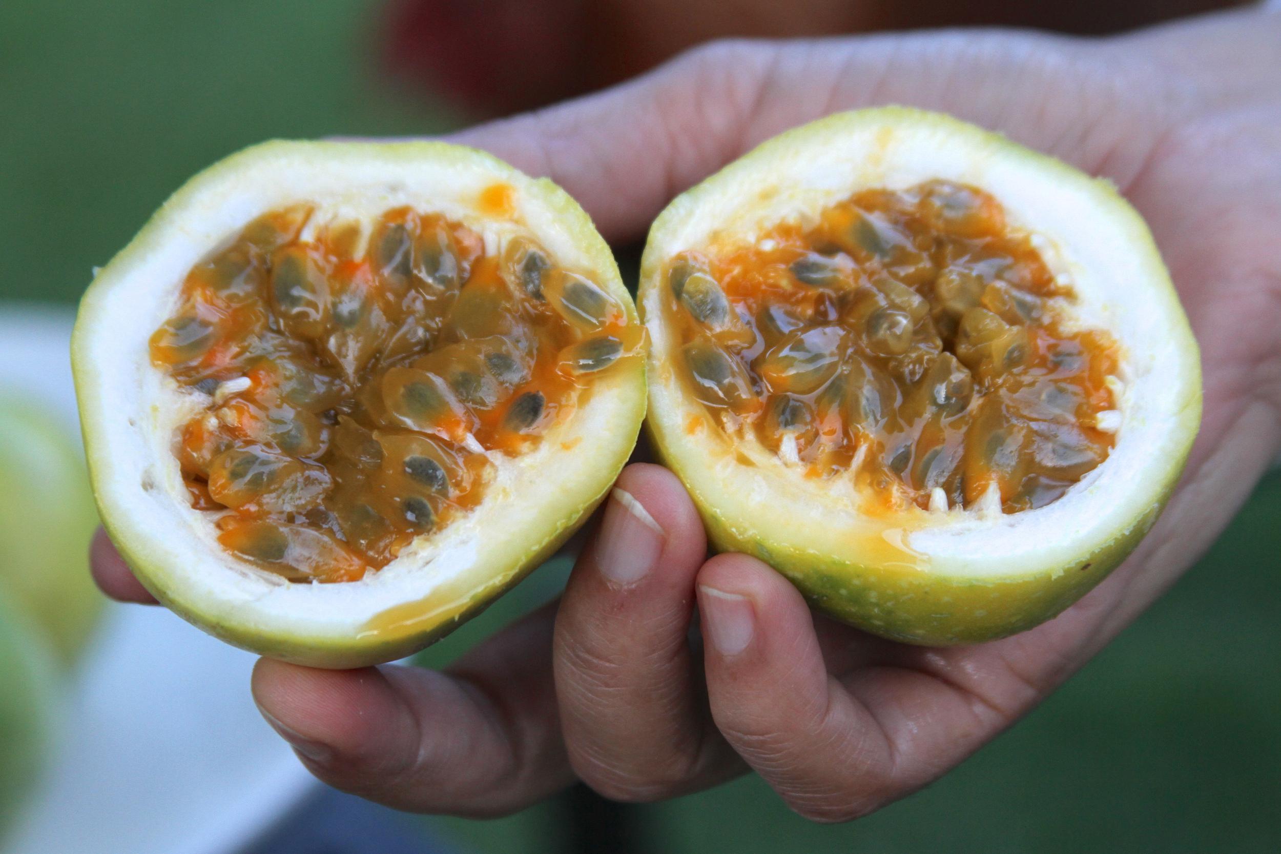kenyapassionfruit2.jpg