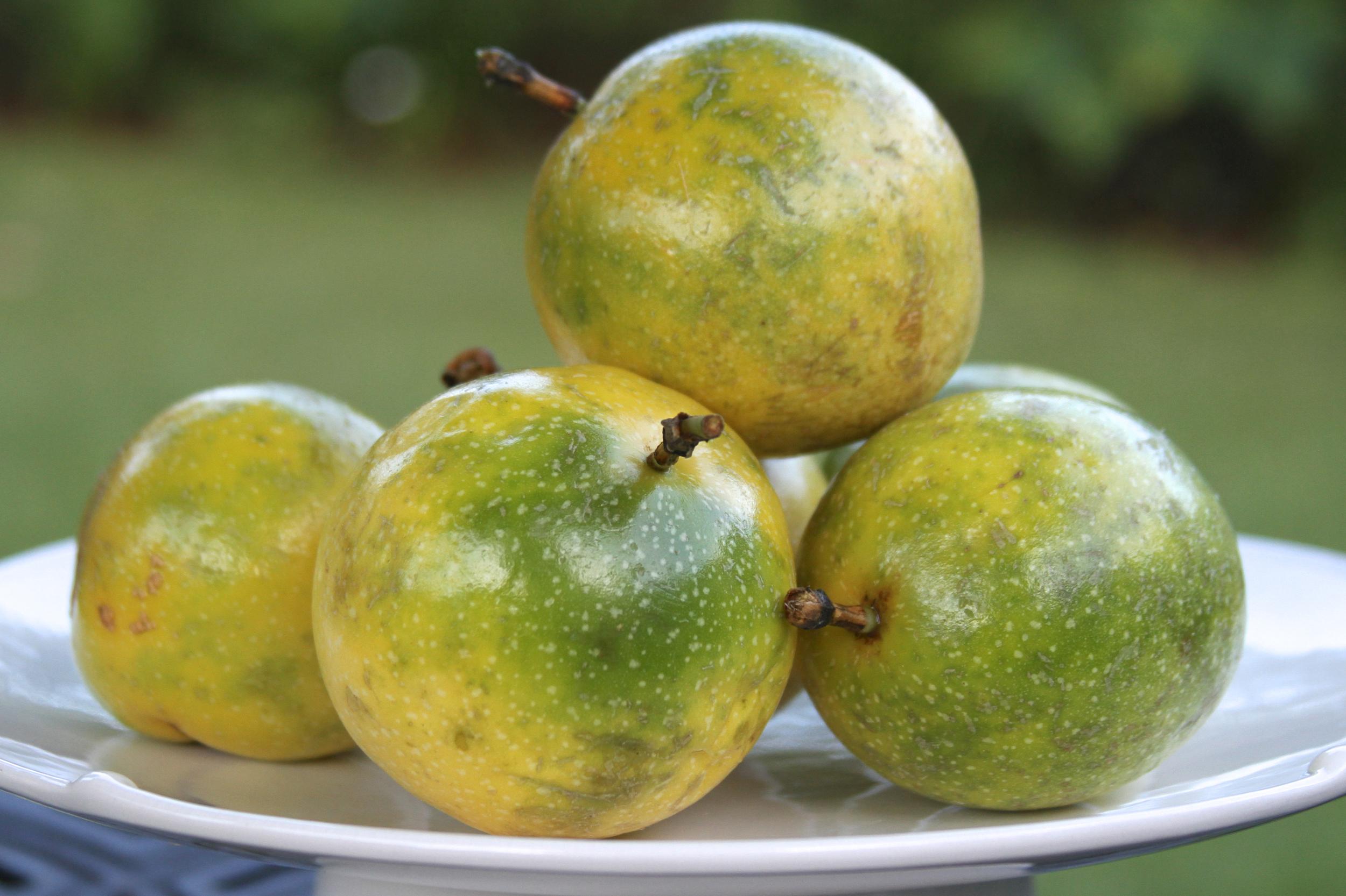 Passion fruit!