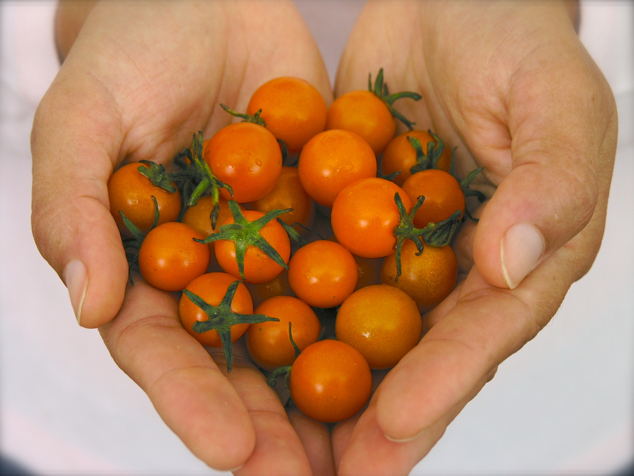 Oh, cheer up and eat some cherry tomatoes!