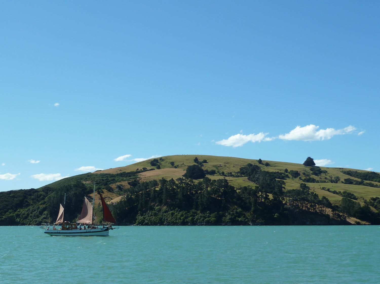 A Sailboat In Akaroa