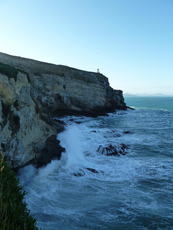 End Of The Otago Peninsula