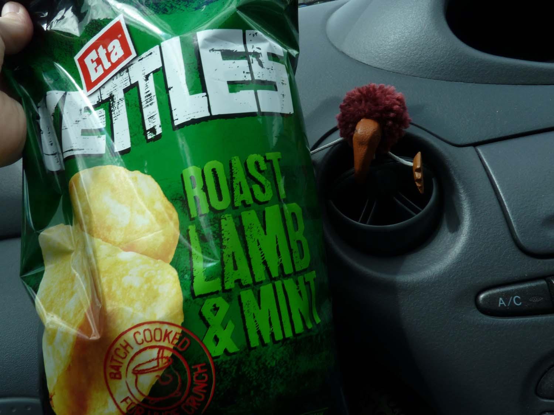 Those Crazy Chip Flavors