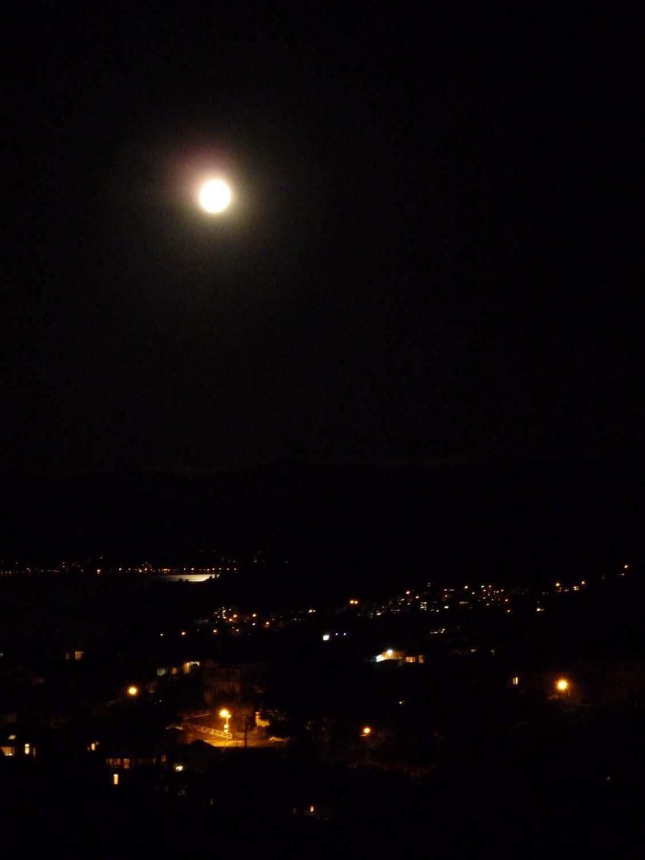 Wellington In The Moonlight