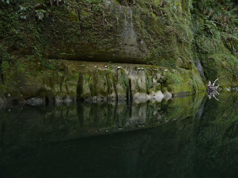 Totem Reflection