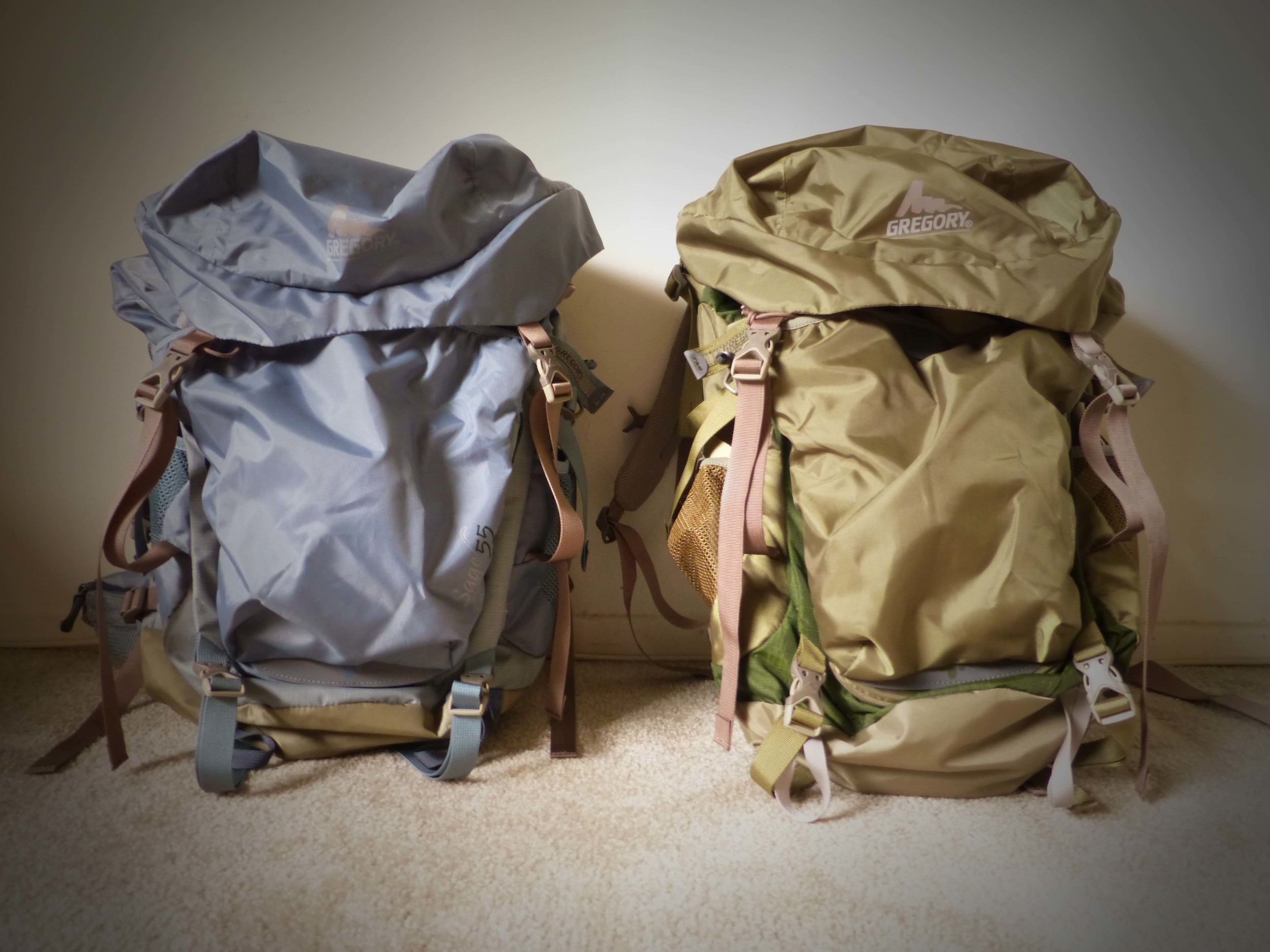 Backpacks for two.