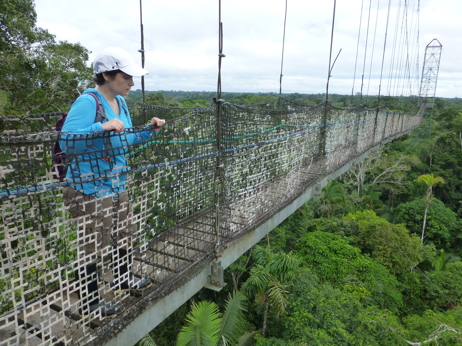 Katie standing on the canopy walkway over the Amazon rainforest.