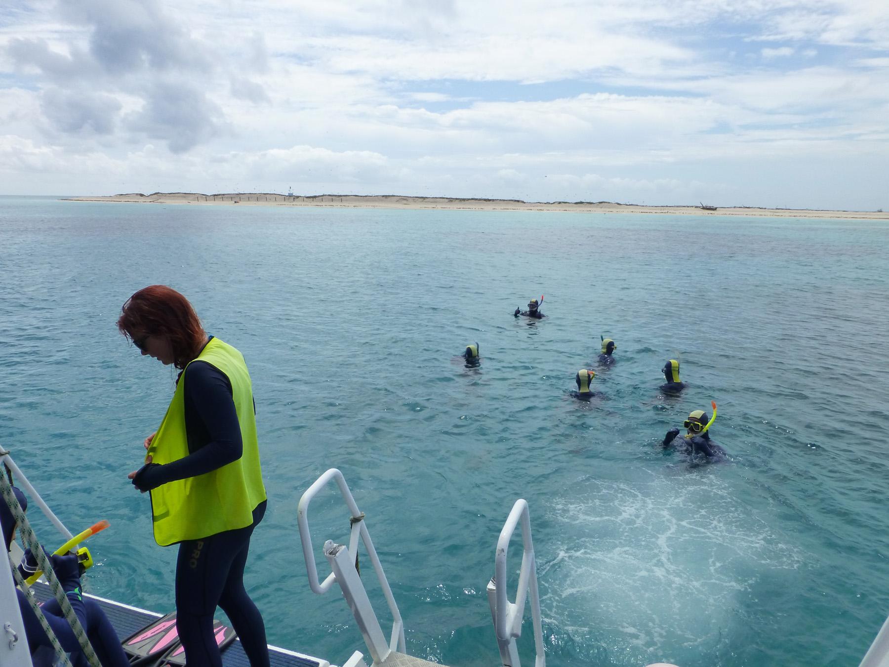 Onward Ye, Snorkelers!