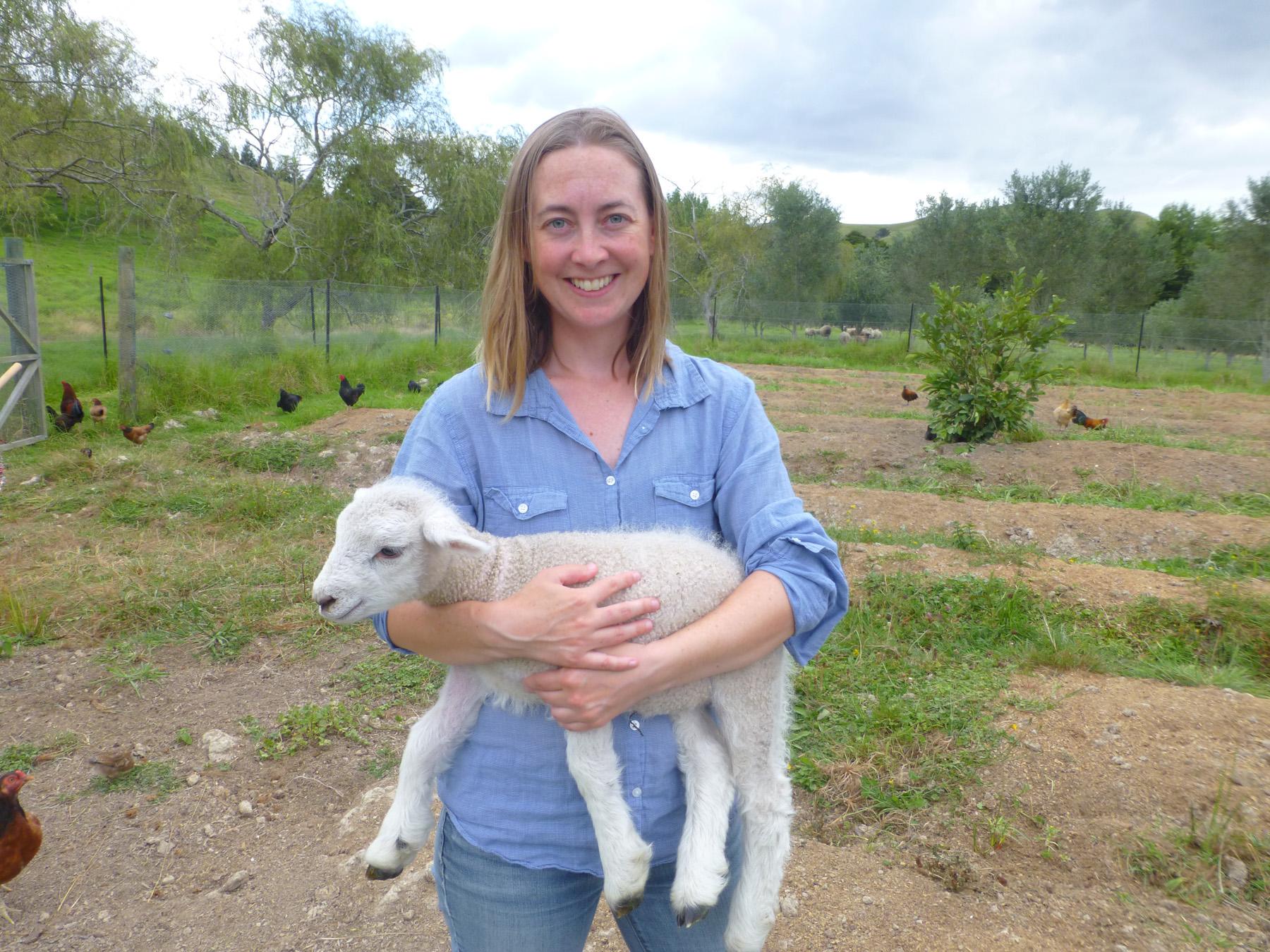 Alice Had A Little Lamb