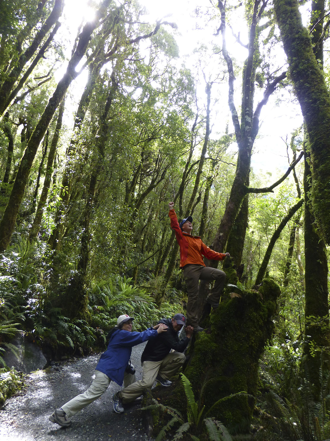 Conquering The Fiordland
