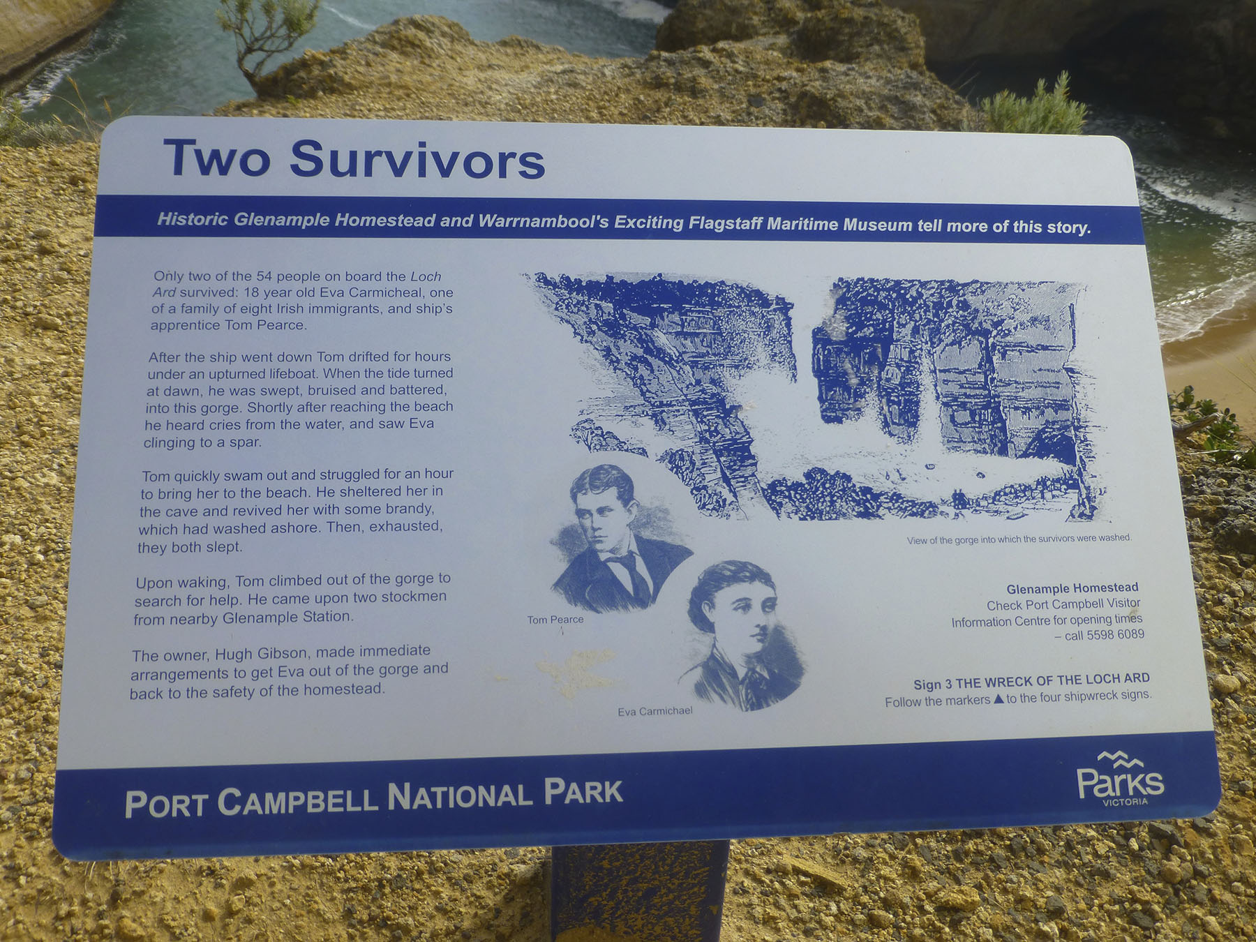 Two Survivors